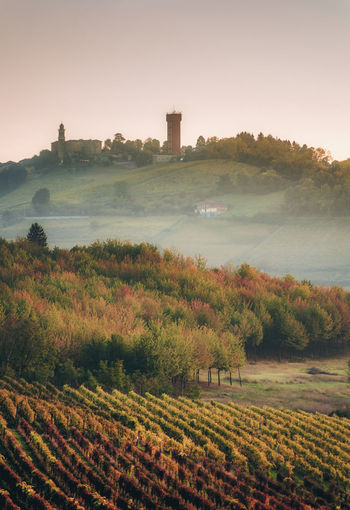 EyeEm Best Shots EyeEm Nature Lover EyeEm Selects Piedmont Italy Autumn Fall Colors Landscape Italy Trees No People Rural Scene Vineyard Tower Langhe Wood Sunset Landscape_Collection Photography Nikon Sky Nature Beauty In Nature Agriculture Tranquil Scene Outdoors