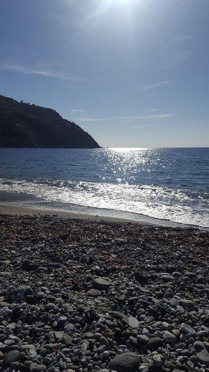 UnderSea Sky Sea Life Beauty In Nature Tranquil Scene Sun Horizon Over Water Sunset LiguriaMonAmour