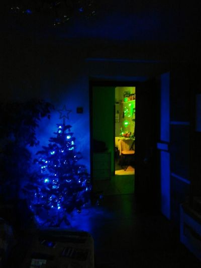 Christmas Decorations Christmas Lights Merry Xmas MerryChristmas No People Night Light Bulb Nightlife Lighting Equipment Decoration Merry Christmas Blue Indoors  Christmas Preparations Green Christmas Tree 🎄