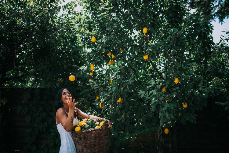 Young woman with fruits in basket on tree