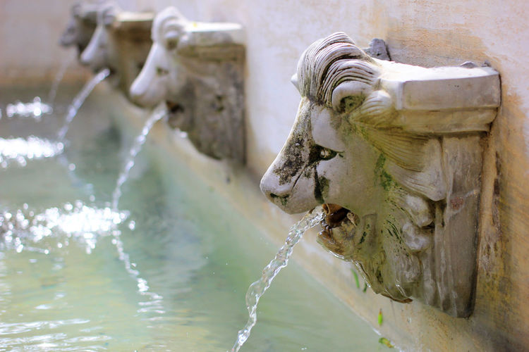 Water Day No People Focus On Foreground Fountain Sculpture Nature Animal Representation Motion Animal Themes Art And Craft Outdoors Close-up Statue Architecture Mammal Animal Representation Creativity Flowing Flowing Water Drinking Running Water