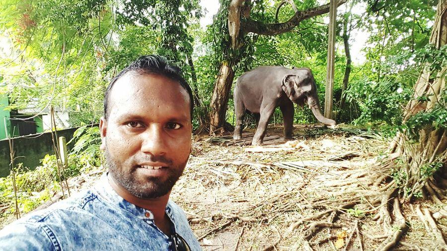 Elephant Selfie It's Me Elephant Eid Tour