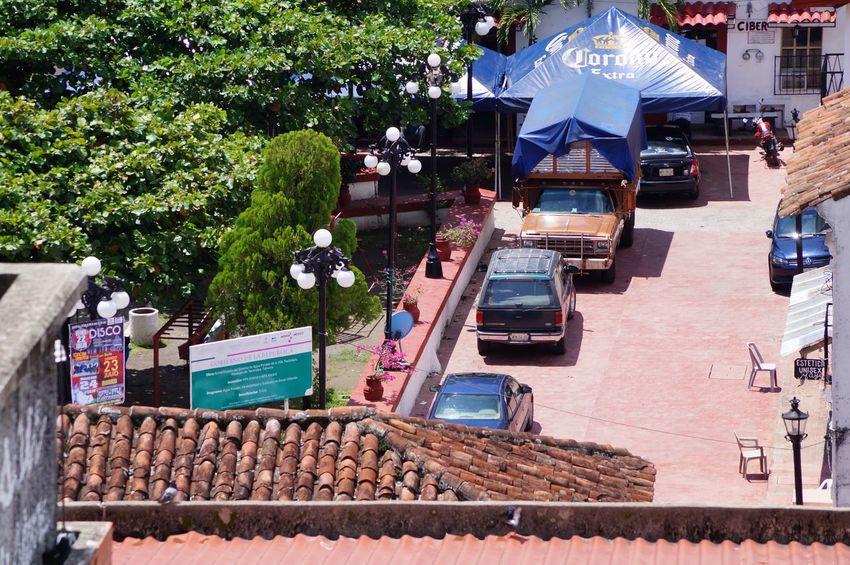 #festival #park #pueblomagico #tapijulapa Day Outdoors Roof Tree