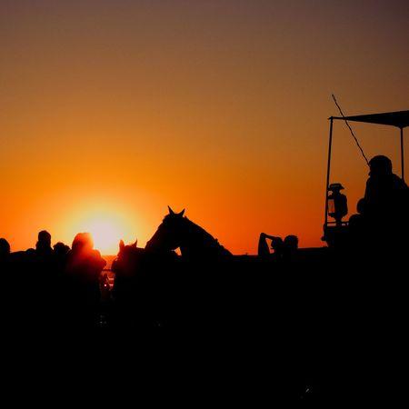 Sunset un Sanlúcar Cadiz SPAIN Andalucía Water Silhouette Fujifilm Fujifilm_xseries Orange Color Sun Working Animal Jockey Horse Scenics Tranquil Scene