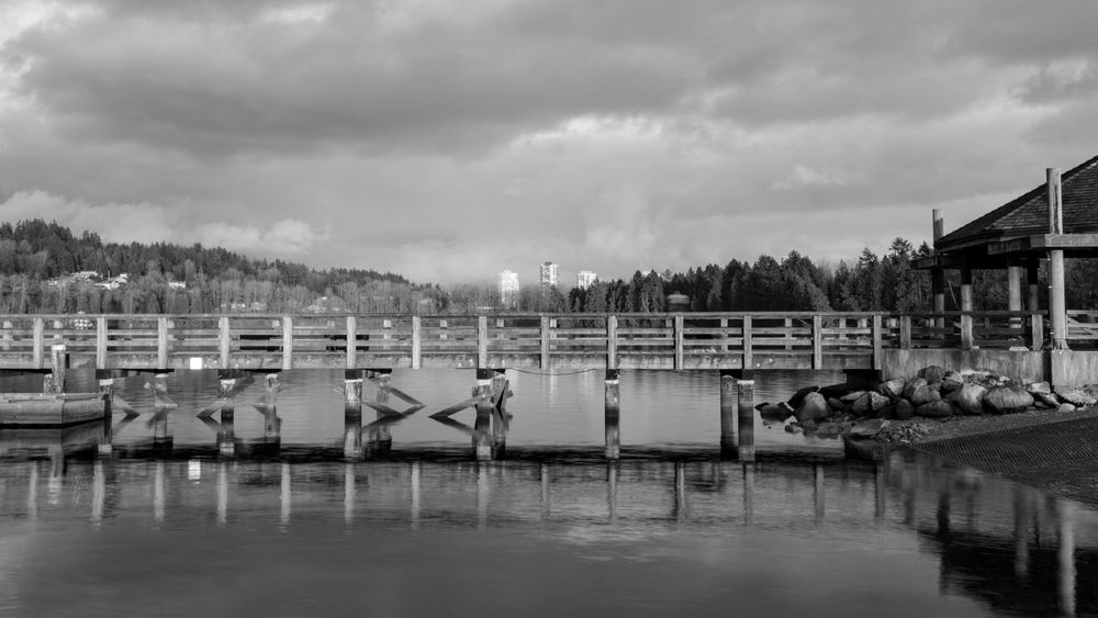 #B&W #beautifulbc #reflections #supernaturalBC Animal Themes Architecture Built Structure Cloud - Sky Day Nature Nautical Vessel No People Outdoors Pedal Boat Sky Swan Tree Water Waterfront