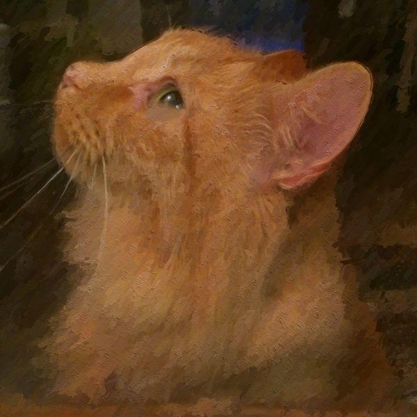 IPSPaint Cats Portrait