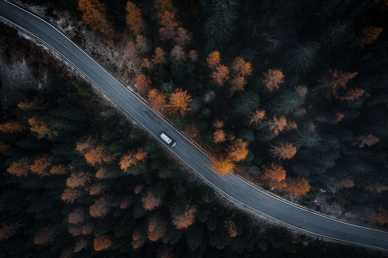 High angle view of road amidst trees at night