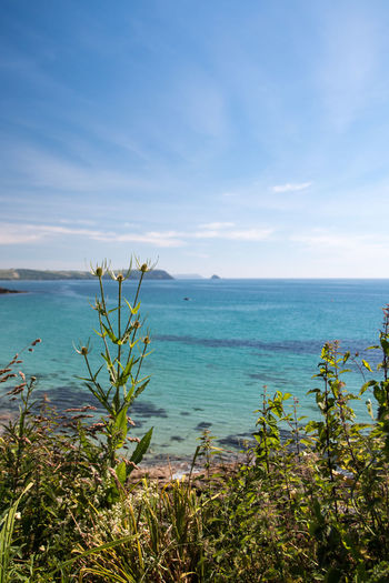 Seascape Photography Beach Beauty In Nature Blue Cloud - Sky Cornwall Day Growth Horizon Horizon Over Water Idyllic Land Nature No People Outdoors Peaceful Plant Scenics - Nature Sea Seascape Sky Tranquil Scene Tranquility Turquoise Colored Water