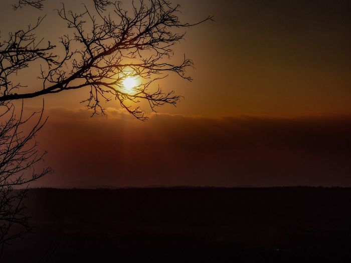 Abendstimmung Eyem Best Shots Nature_collection Eyem Best Shots Eyem Nature Lovers  Ruine Botenlauben Sky Sunset Beauty In Nature Tranquility Scenics - Nature Silhouette Tranquil Scene Tree Idyllic Nature Orange Color Sunlight