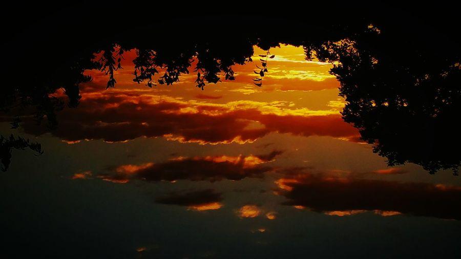 43 Golden Moments Golden Sunset Golden Hour Golden Moment Colour Of Life A Bird's Eye View