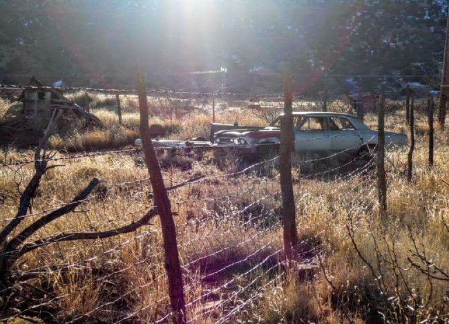 No People Day Outdoors Derilict Rotting Ghost Town Cuervo, NM Abandoned Car Junk Cars