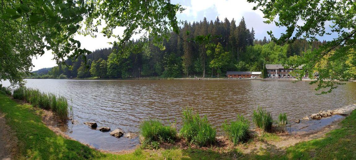 Nature Deininger Weiher Vacation Destination Travel Destinations Tree Water Lake Bird Sky