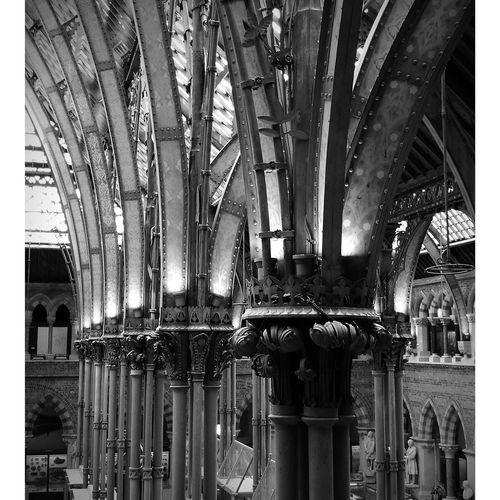Oxford Museum Of Natural History Architecture Columns Columns And Pillars Gothic Architecture