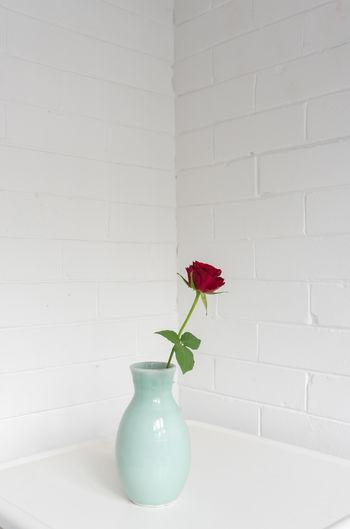 Flower vase against wall