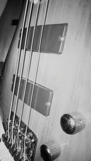 Taking Photos Blackandwhite Blackandwhite Photography Enjoying Life GoodTimes From My Point Of View Ibanez Ibanez Guitars Bass Coco's Coco'sPics Houseofguitars Hers