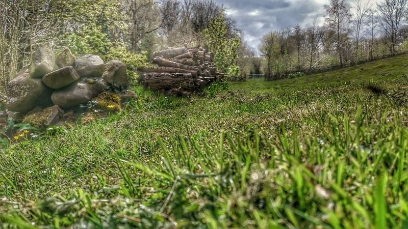 Rock Pile Wood Pile Gate Grass Sky_collection Garden Photography Distant View Down To Earth Springtime Green Green Green!