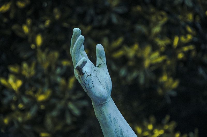 Just grab my hand // Close-up Outdoors Statue EyeEm Best Shots Buenosairesciudad Mano Hand Expression Connected With Nature Agameoftones Eyeemphotography EyeEm Beauty In Nature No People Nature Tranquility Ciudad Autónoma De Buenos Aires Carlosthays Jardinbotanico Lanochedelosjardines Buenosaires Palermo Eyeemphoto Tree Photography Adventures In The City