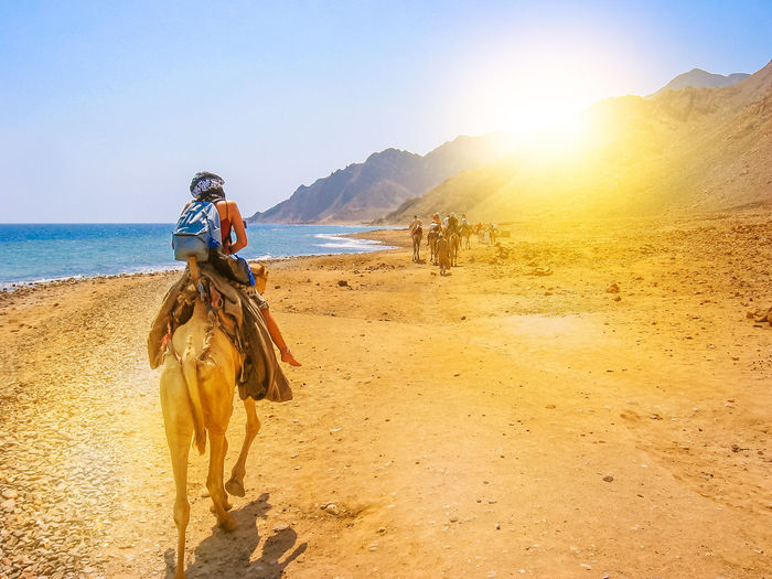 Rear View Of Woman Riding Camel At Beach