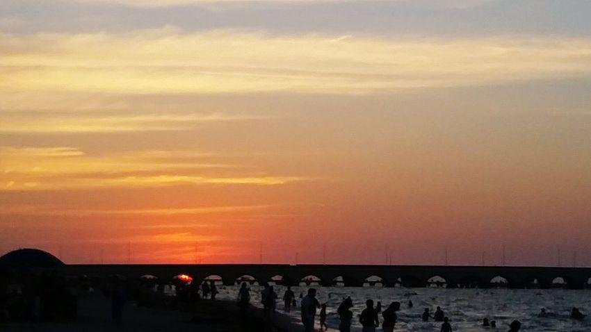 atardecer en Progreso City Sunset Bird Sea Beach Water Sky Horizon Over Water Architecture Built Structure