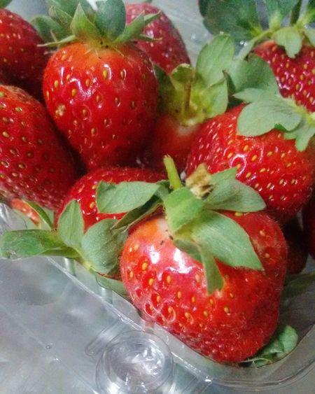 Morangos Red Fruit Food Stramberry Fruta Frutasvermelhas