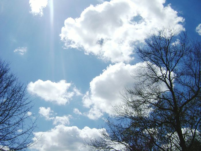 Sunny picture Blue Sky Sunshine White Clouds