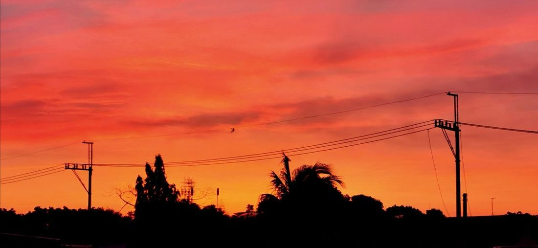 The Dawn Dawn Orange Morning City Tree Telephone Line Electricity Pylon Sunset Electricity  Technology Cable Silhouette Fuel And Power Generation Business Finance And Industry Telephone Pole Electrical Grid Romantic Sky Atmospheric Mood Dramatic Sky