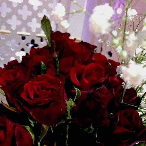 My two favs Red Roses Rose Baby Breaths Flowers Pretty Romantic