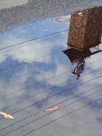 Water Reflections Sky_collection Sky Fallen Leaves Reflection Ship Sailfish Windvane Streetphotography Urbanphotography