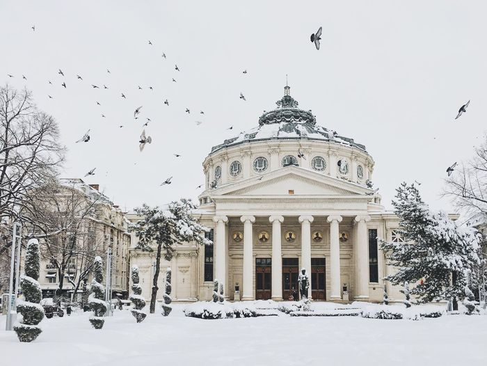 Low angle view of romanian athenaeum against sky during winter