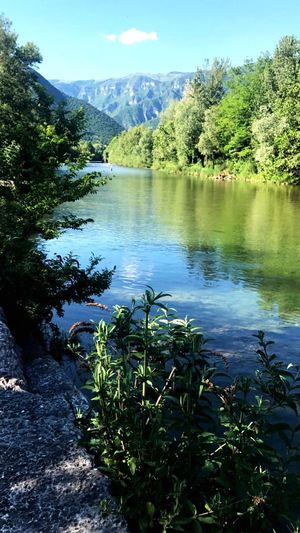 Passeggiate rigeneratrici Me Water River #landscape #photography #nature Beauty In Nature Wonderful River View Running Jogging Nature_collection