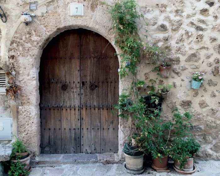 Door Entrance Architecture Plant Wood - Material No People Built Structure Façade Outdoors Day Building Exterior Growth