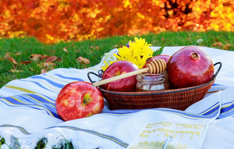 Apples and honey dipper with basket on picnic blanket
