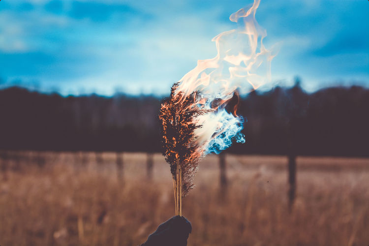 Burnout Flame Smoke Tranquility Agriculture Beauty In Nature Burning Close-up Dusk Evening Sky Field Fire Flame Focus On Foreground Growth Heat - Temperature Landscape Mood Nature No People Outdoors Plant Scenics Sombresociety Sunset