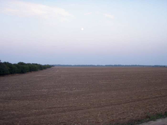 Minimalism Moon