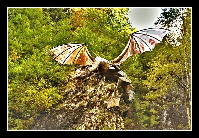 hexenweg nature dragon schwarzsee switzerland