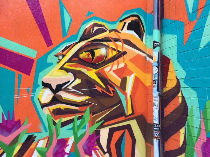 Art And Craft Multi Colored Graffiti Creativity Street Art Built Structure Architecture Paint Backgrounds Painted Image Close-up No People Day Indoors  Tiger Graffiti Streetart Ray De La Cruz Hamburg St. Pauli Talstraße Colorful Art First Eyeem Photo Arts Culture And Entertainment