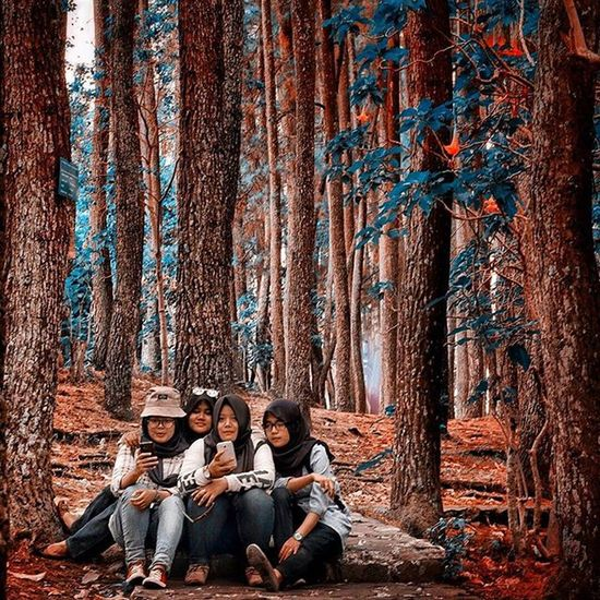 Ceritanya mau candid tapi ada yg sadar kamera kayanya hahaha . Autumn Beutiful  Bandung Tamanhutanraya Funny Travel Greatview Love Tahura Nature Natural Indonesian Panorama Landscape Explore Exploreindonesia Hunting Chasinglight Photograph Latepost Streetphotography Bestwork Candid Garden Jalanjalan niceview bestfriend nice tree wood