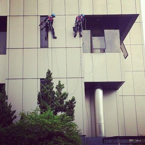 He's Climbers At PT.Bank Mandiri Tbk. Pekanbaru Office. Petugas kebersihan gedung. Pembersihan alumunium fiber. Climber Pekanbaru Kamerahpgwe Lensakamera Panjat Extreme