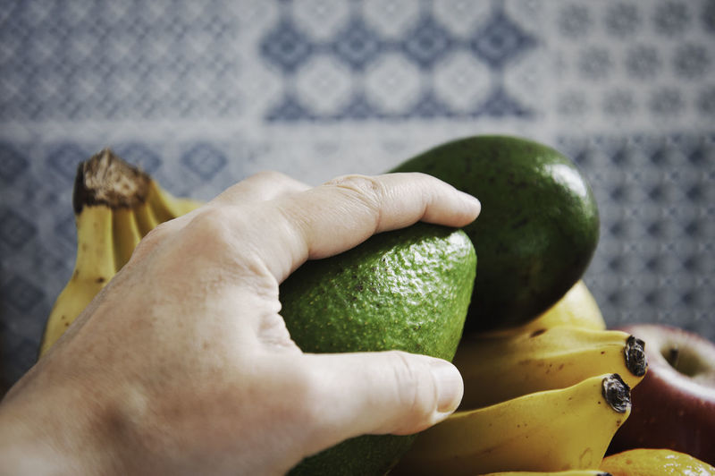 Cropped hand holding avocado