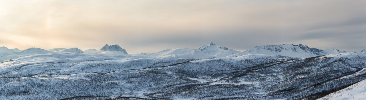Allone  Cold Cold Temperature Far North Halo Light Landscape Mountain Mountain View Mountains Northern Norway Norway On Top Panorama Pastel Pastel Power Senja  Snow Snow Covered Summit Trees Winter Landscapes With WhiteWall The Great Outdoors - 2016 EyeEm Awards