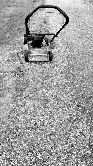 Business Stories Greenkeeper Nature Mowing The Grass Blackandwhite Icy Grass No People Outdoors Close-up
