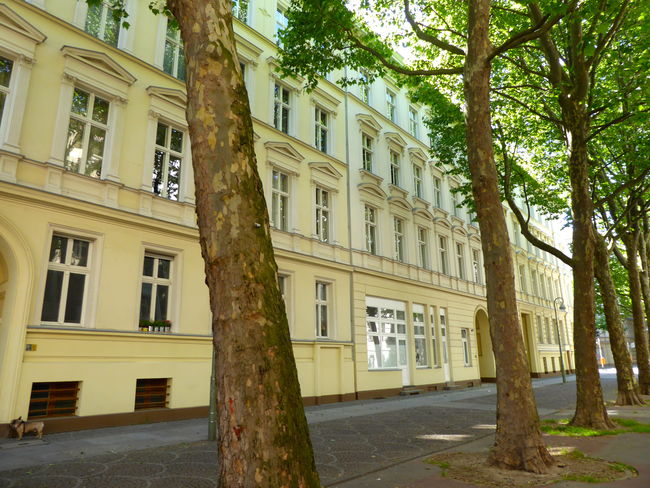 19th Century Buildings Apartment Buildings Architecture Berlin Schöneberg Building Exterior City Film Background No People Outdoors Residential Building The Architect - 2017 EyeEm Awards Tree Lined Street