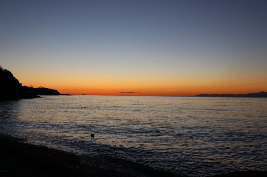 Sunrise Sea Water Nature Beauty In Nature