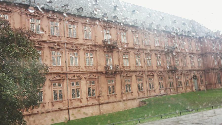 Where's the sun?☔ Rainagain Mainz Daytrip