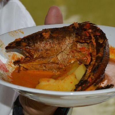 Snakehead fish goulash - the beast fish go to delight food Enjoying Life Taking Photos Food Foodphotography Cook  Cooking Makan Makanan Makanan Indonesia Masakmasak Masak Masakan Sumaterautara INDONESIA First Eyeem Photo