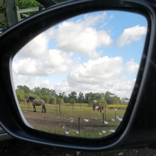 Panoramic view of landscape seen through car window