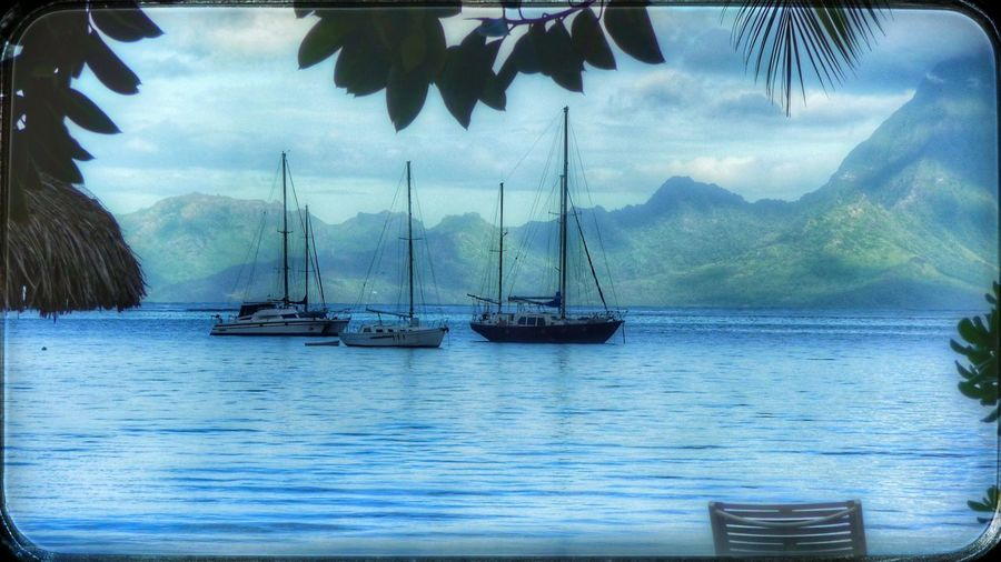 Nautical Vessel Sky Transportation Water Mode Of Transport Moored Mast Sea Scenics Outdoors No People Sailboat Reflection Tranquility Day Boat Nature Beauty In Nature Tranquil Scene Mountain Tahiti ❤ Papeetebeach Papeete Polynesia EyeEm Best Shots