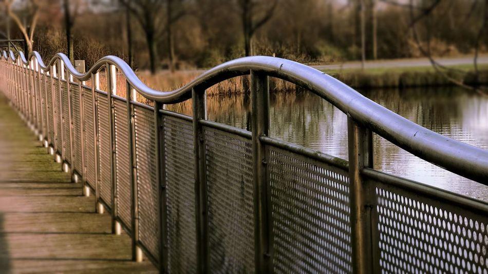 curvey track Goodlight Railing Day Outdoors Footbridge The Way Forward Nature