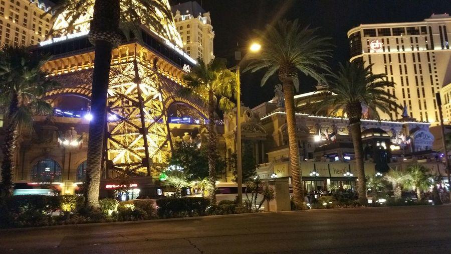 Driving Night Vegas Passing Paris Hotel 🗼🥂🍾 Vegas Nightlife París Hotel-Las Vegas, Nevada Tree Illuminated Palm Tree Architecture Building Exterior Entertainment HUAWEI Photo Award: After Dark #urbanana: The Urban Playground