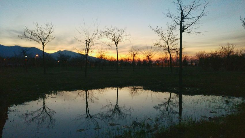 Reflection Lake Sunset Water Tree Silhouette Sky Beauty In Nature Outdoors Flood Day Scenics Backgrounds No People Nature